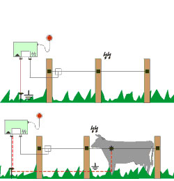 ELECTRIC FENCE WIRE, POLY TAPE AMP; ELECTRIC ROPE - HORSE.COM